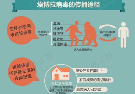 埃博拉病毒的传播途径 图片来源:新华网